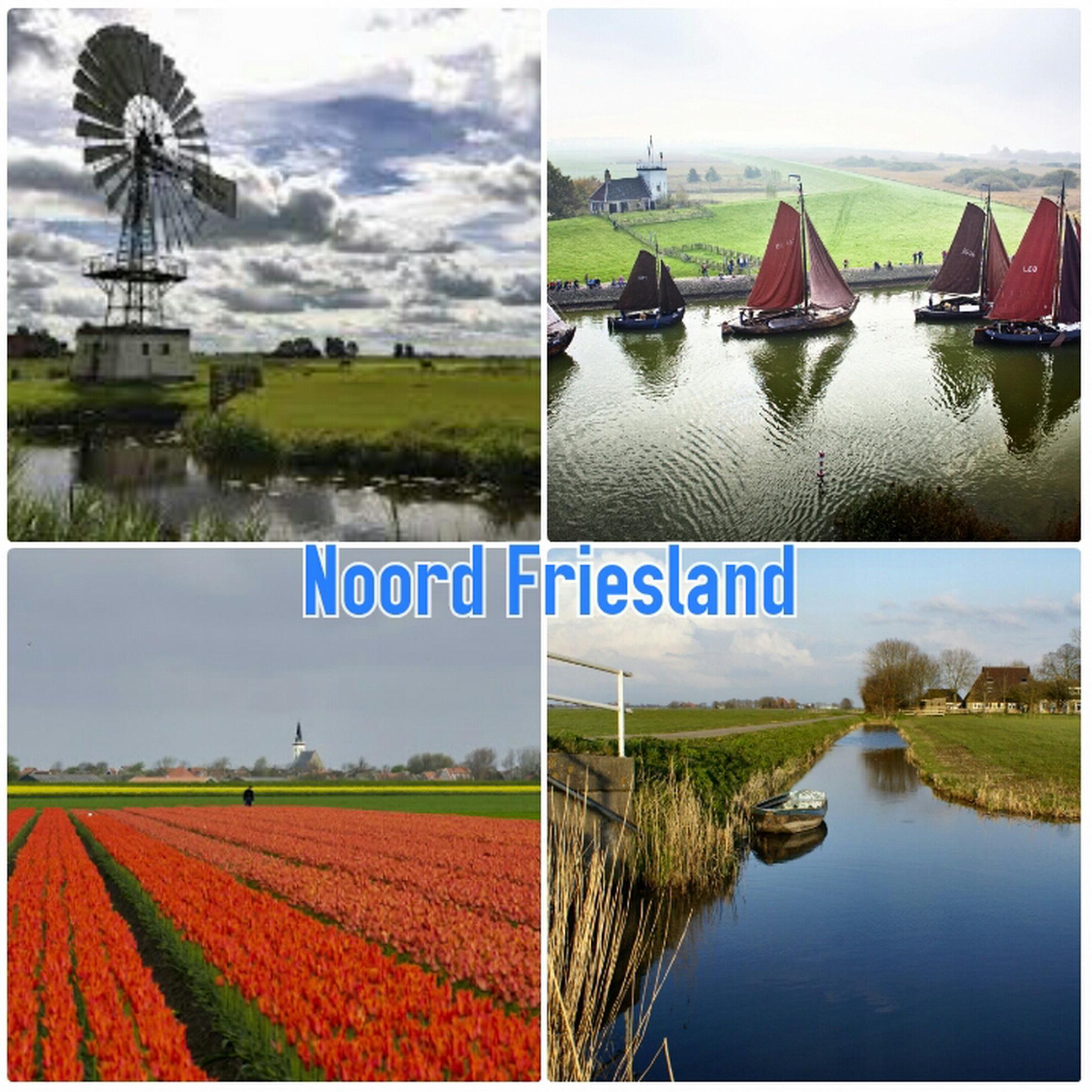 inwoners friesland 2006